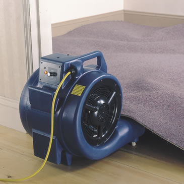 Floor and Carpet Dryer
