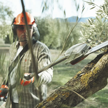 Long Reach Pruners